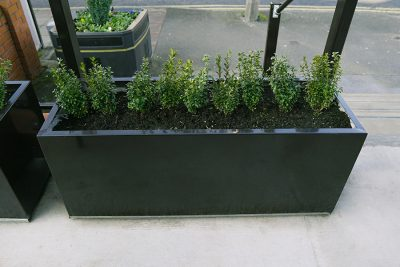 outdoor garden planter with bushes in it at a pub