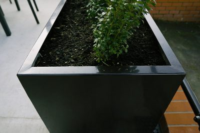 outdoor planter with shrubs in it
